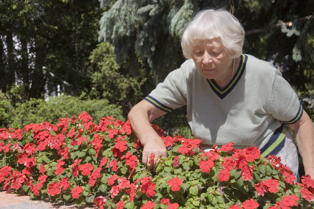 Can Gardening Help Patients Recover Faster?